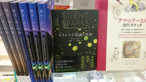 japanese version in bookstore