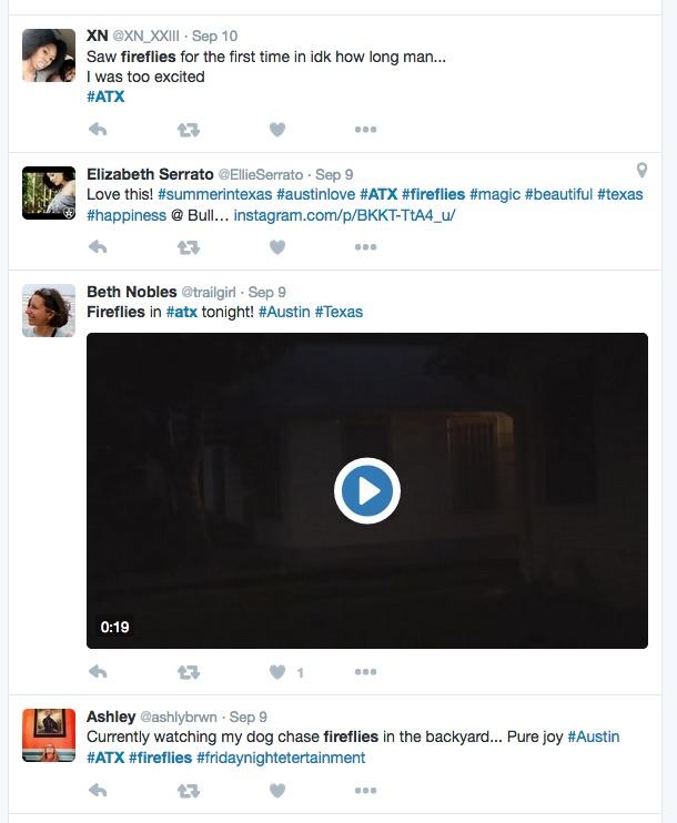 fireflies-texas-sept-tweets