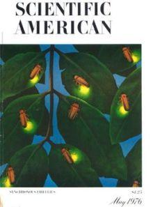 scientific-american-1976-cover